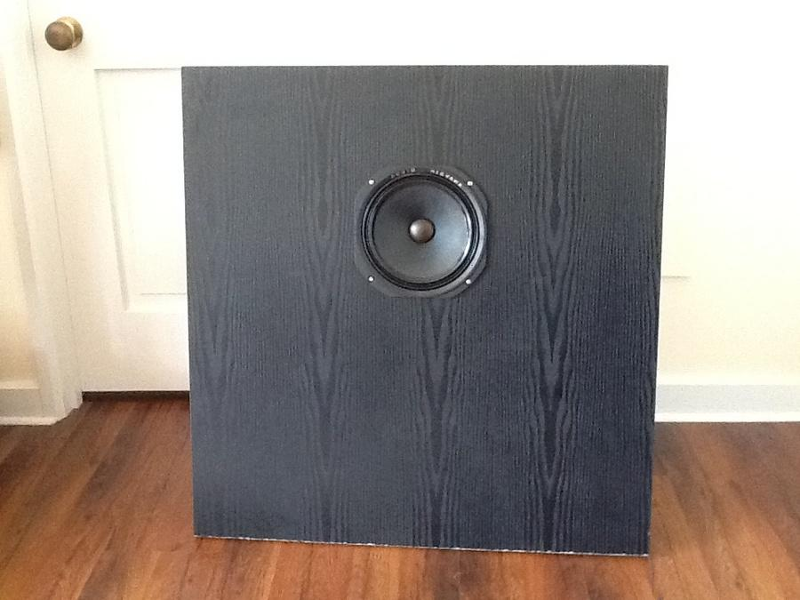 [Un open baffle con altoparlante Audio Nirvana]