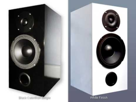 [Alacrity Audio Caterthun integrated loudspeaker amplifier]