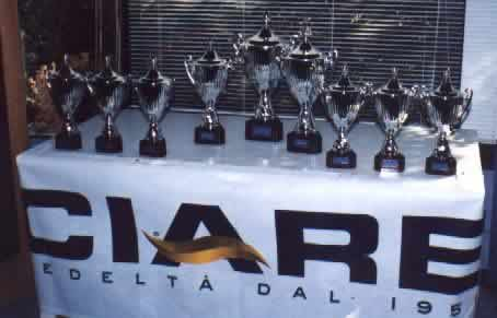 [Ciare DIY Trophy]